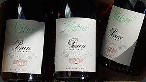 ChateauPenin