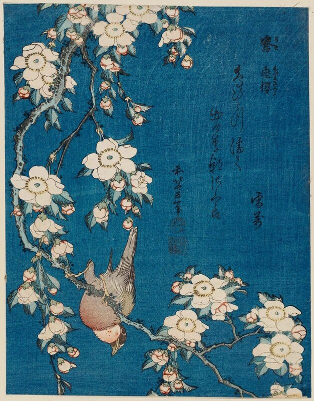 Katsushika Hokusai Bullfinch and weeping cherry