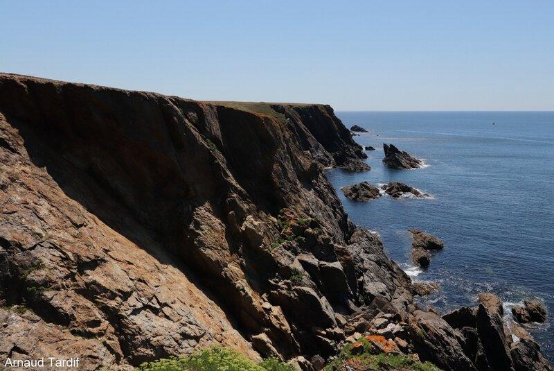 00827 Guidel - L'Ile de Groix - De la Pointe de Pen-Men à la Grotte aux Moutons