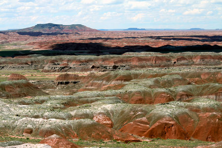 Petrified_Forest_34