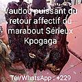 Vaudou puissant du retour d'affection du marabout sérieux kpogaga