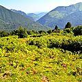 Le fond d'Issaux et la vallée du Lourdios depuis Barlagne.