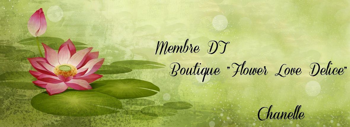 membre_dt_affiche</a></li> </ul> <div class=