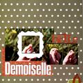 09_07_21_belle demoiselle