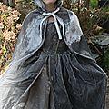 robe peau d'ane
