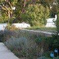 Terrasse et la prairie naturelle