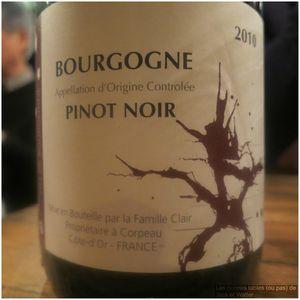 Le Cornichon Bourgogne Pinot Noir 2010