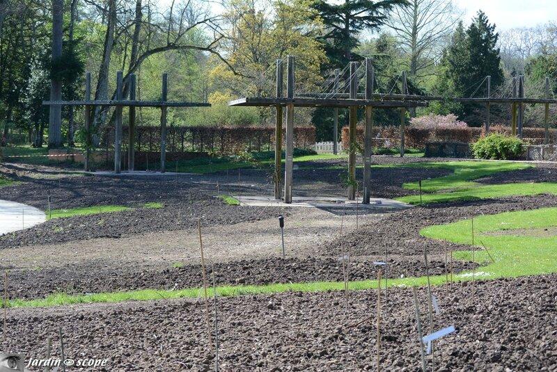 La Roseraie du Miroir du Parc Floral de la Source - Orléans 2014
