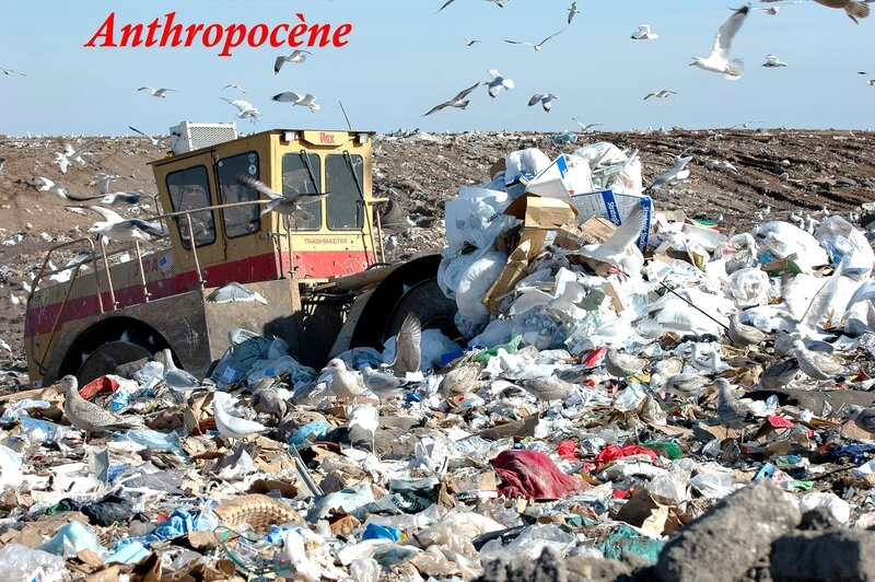 Anthropocène