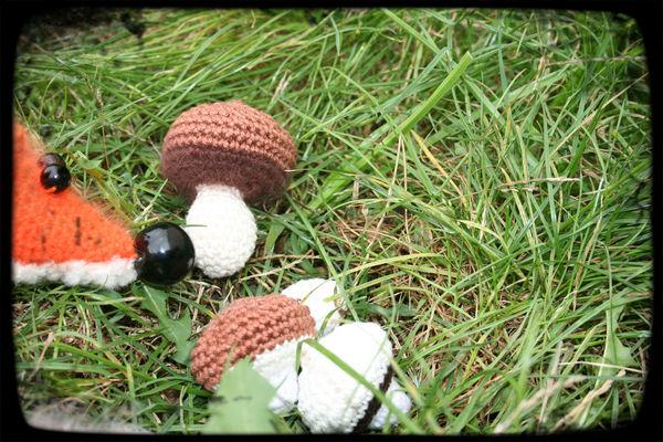 le_nez_dans_les_champignons