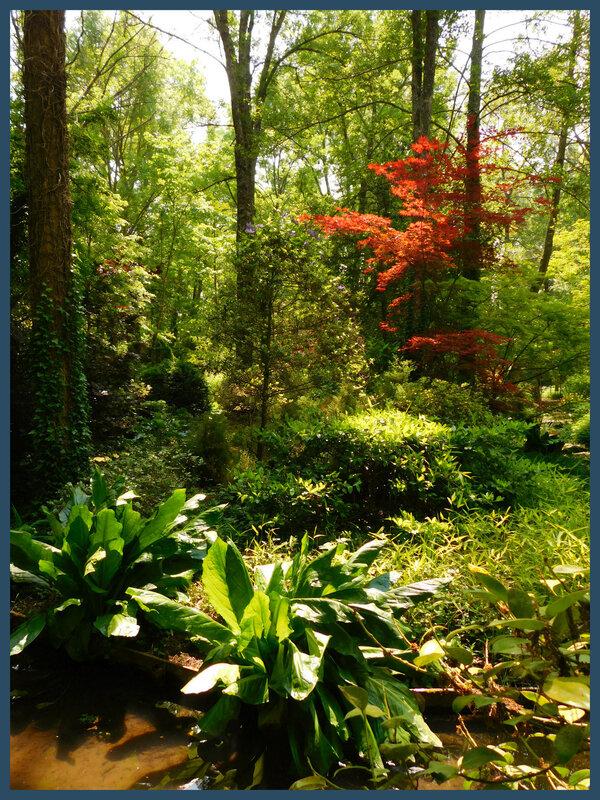 Arboretum des prés de Culand