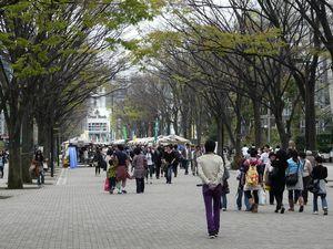 Canalblog_Tokyo03_11_Avril_2010_034