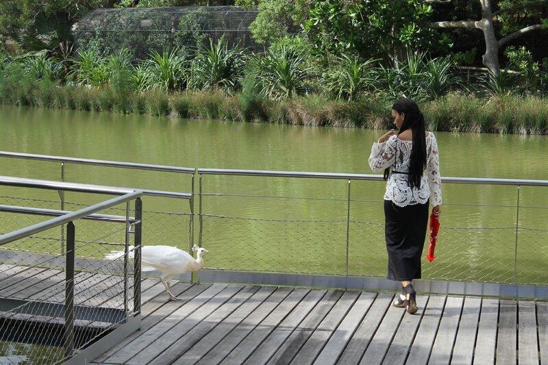 Parc Forestier - Sara.Ki