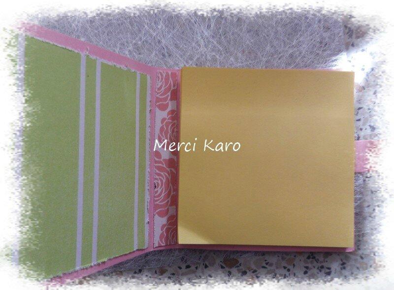 140212 Karo 11