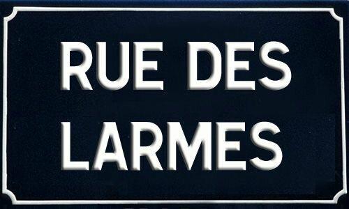 RUE DE LARMES69892251