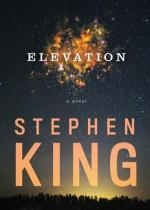 Elevation_(novel)