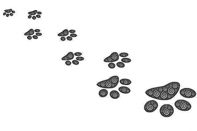 footprints-485761_640