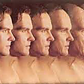évolution human