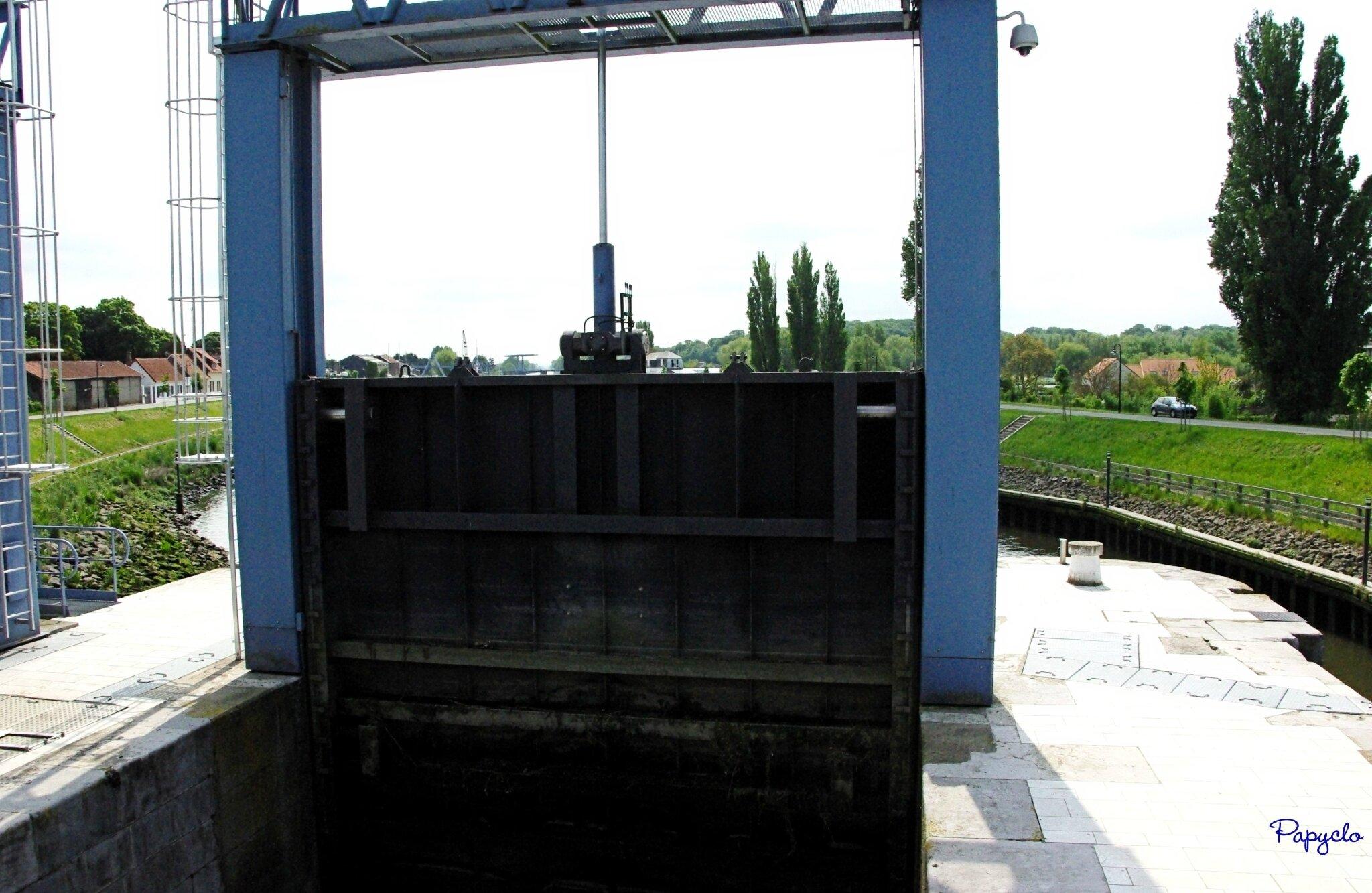 IMGP5623