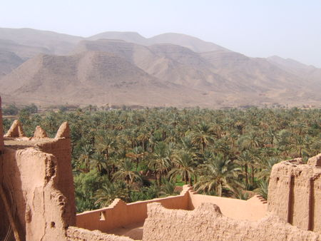 Maroc_f_vrier_2008_115