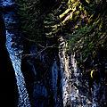 Gorges des Tines (2)