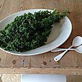 La quête du kale !