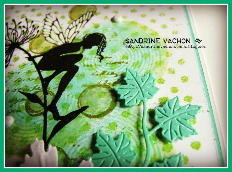 Sandrine VACHON défi 493 juin 2017 (5)