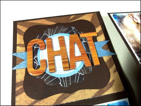 Chat 2 (2)