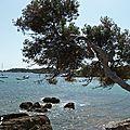 Hyères #4 - presqu'île de giens
