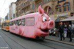 train_cochon