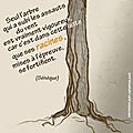 Citation 5... arbre