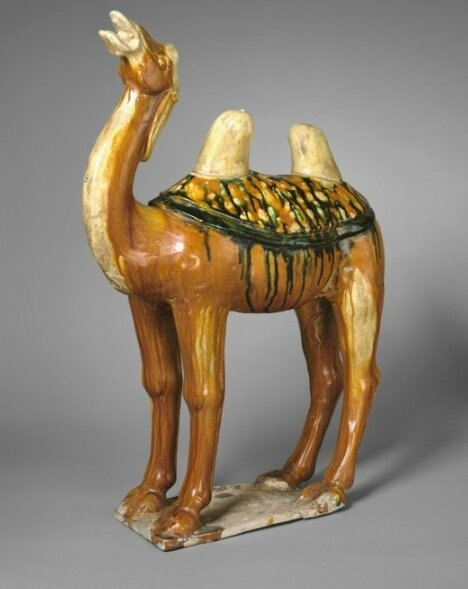 Camel, China, early 8th century, Tang dynasty
