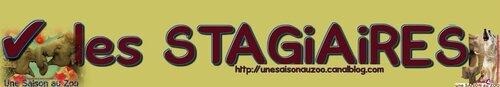 _ les STAGiAiRES