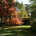 Les couleurs d'automne de l'Arboretum