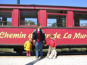 petit_train_mure