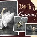 Cygnes_ballet_Web_08