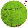 Belle et douce année 2010 !