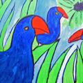 Poule d'eau et autres oiseaux