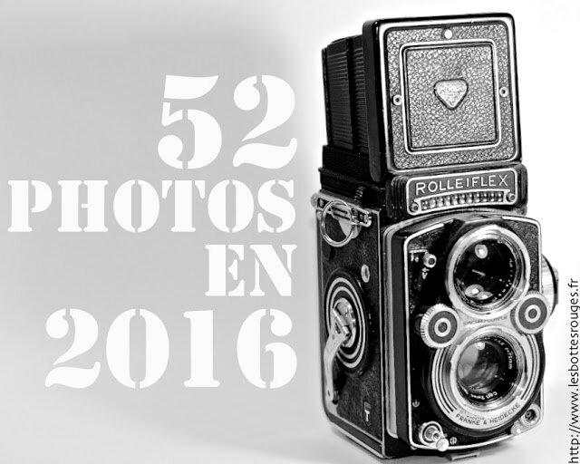 logobottes2016-2