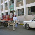 Transports Edfou 060