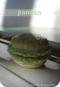 macaron_pandan_010309