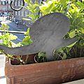 escargot pique fleur en zinc (3)