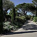 saint-tropez-parcs-et-jardins-1
