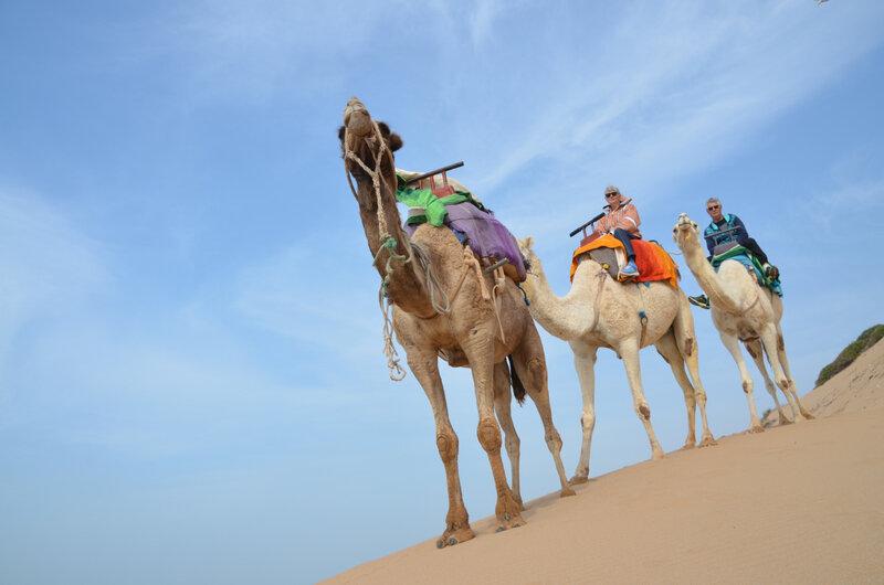 11 sur les dunes