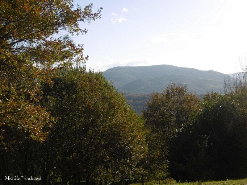 Du Col d'Ibardin à Bidart 151118