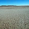 Désert de l'altiplano - Bolivia