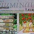 01 - 0686 - tavagna - avant le concert - fiuminale - 17 aout 2012