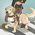 En direct d'italie, des panettone bonfanti pour financer un chien d'aveugle