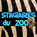 STAGiAiRES du zoo