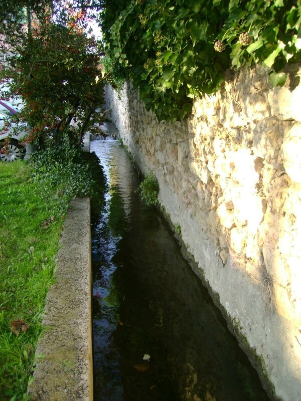 Trans-canal